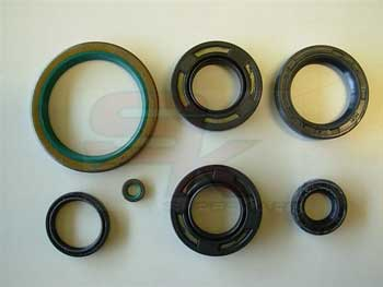 Kit Oil Seal, TM 04028 Teflon